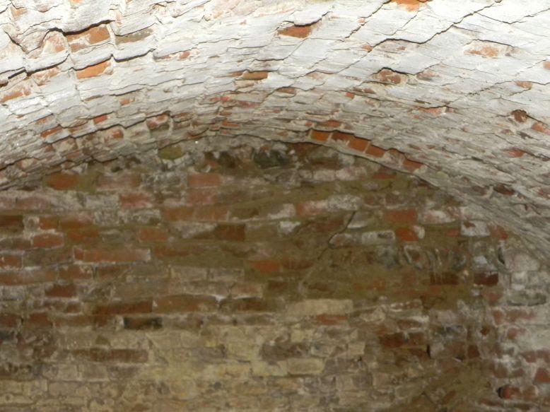 2018-04-08 Brzozówka - mur i piwnice (33)