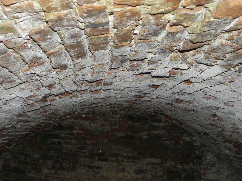 2018-04-08 Brzozówka - mur i piwnice (39)