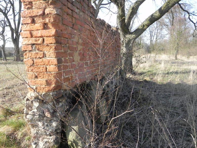 2018-04-08 Brzozówka - mur i piwnice (7)