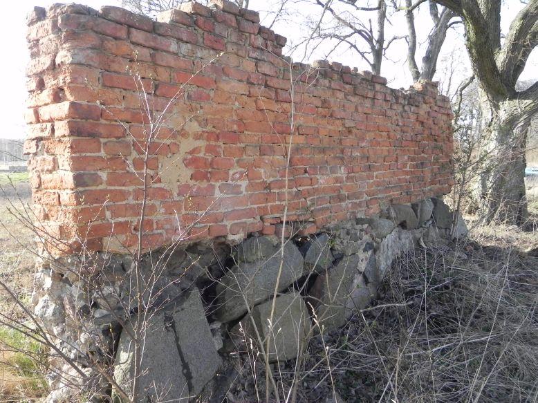 2018-04-08 Brzozówka - mur i piwnice (9)