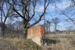 2018-04-08 Brzozówka - mur i piwnice (10)