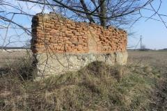 2018-04-08 Brzozówka - mur i piwnice (4)