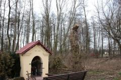 2020-01-19 Michowice kapliczka nr2 (8)