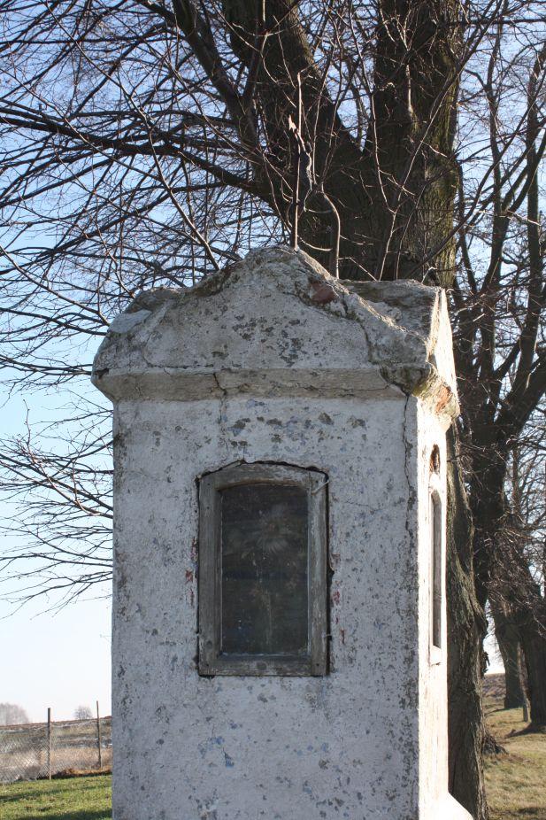 2019-02-10 Miłochniewice kapliczka nr1 (19)