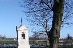 2019-02-10 Miłochniewice kapliczka nr1 (24)
