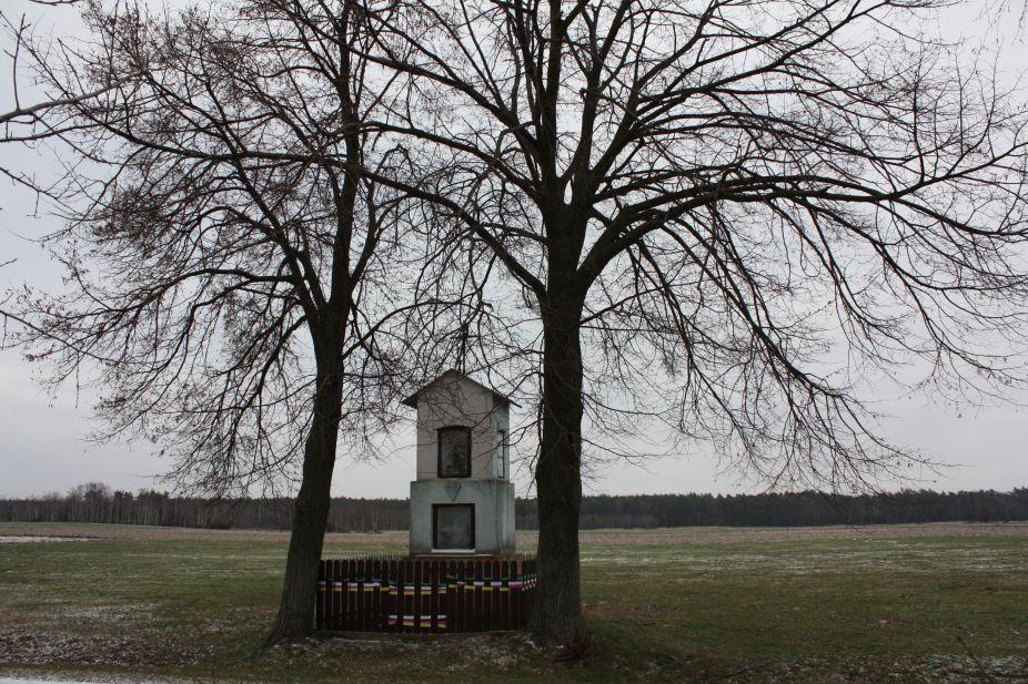 2019-01-19 Nowa Strzemeszna kapliczka nr1 (1)