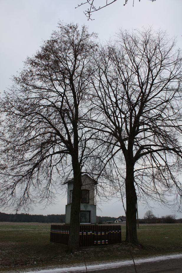 2019-01-19 Nowa Strzemeszna kapliczka nr1 (11)