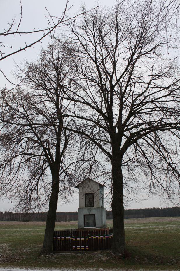 2019-01-19 Nowa Strzemeszna kapliczka nr1 (2)