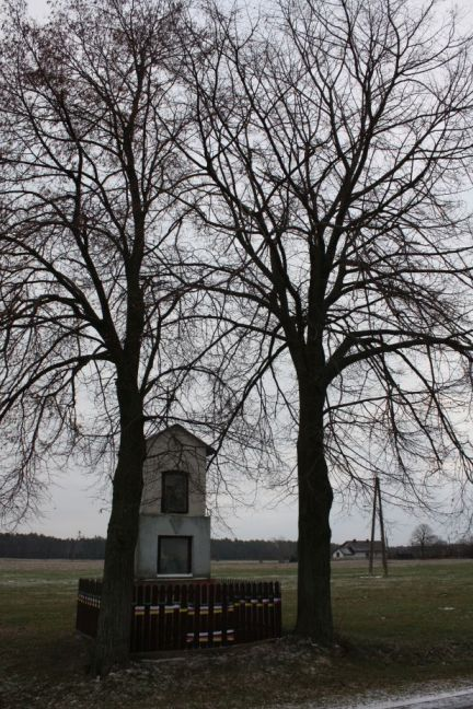 2019-01-19 Nowa Strzemeszna kapliczka nr1 (9)