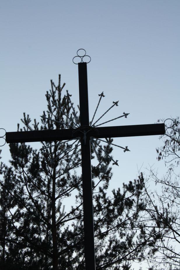 2019-02-16 Nowe Byliny krzyż nr1 (3)