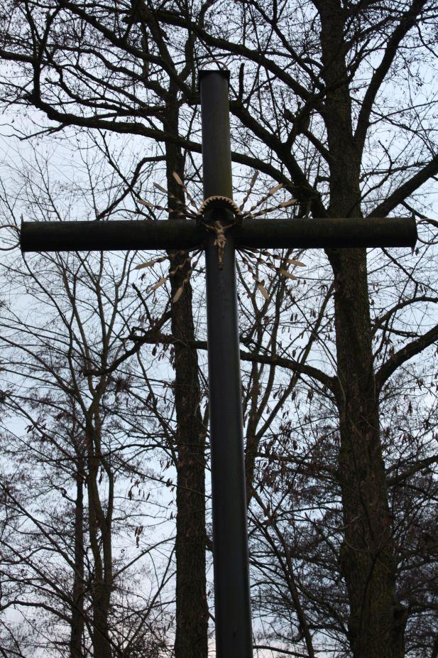 2019-01-06 Boguszyce krzyż nr1 (6)
