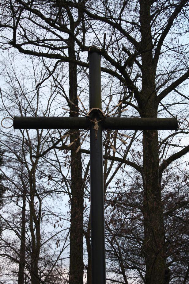 2019-01-06 Boguszyce krzyż nr1 (8)