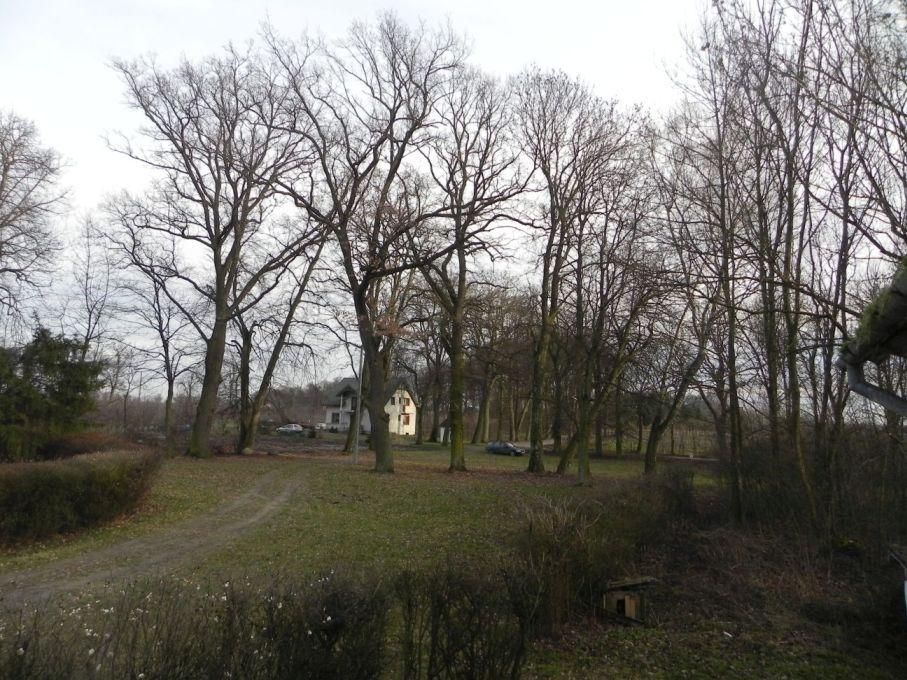 2013-12-26 Bujały - dworek (15)
