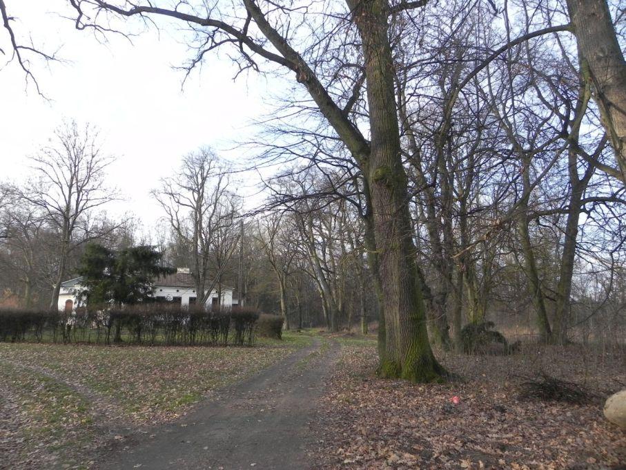 2013-12-26 Bujały - dworek (2)