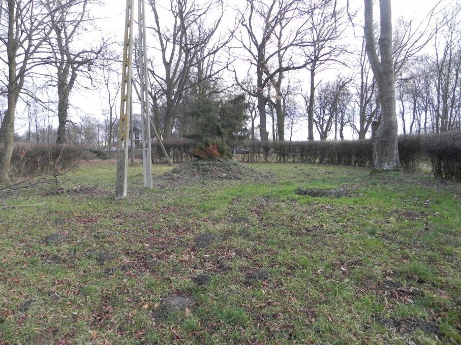 2013-12-26 Bujały - dworek (7)