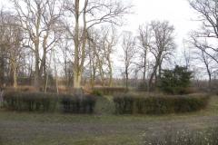 2013-12-26 Bujały - dworek (14)