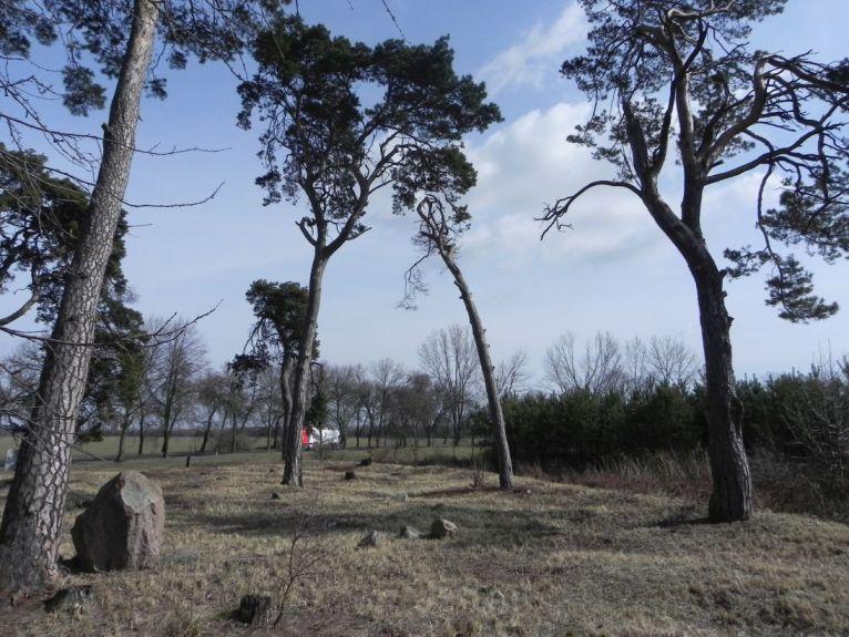 2011-03-23 Cielądz - cm. z I wojny światowej (75)
