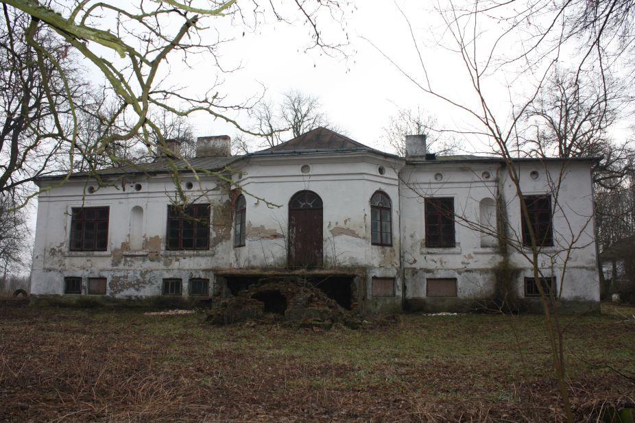2019-02-15 Bujały - pałac (15)