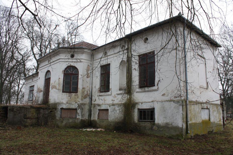 2019-02-15 Bujały - pałac (21)