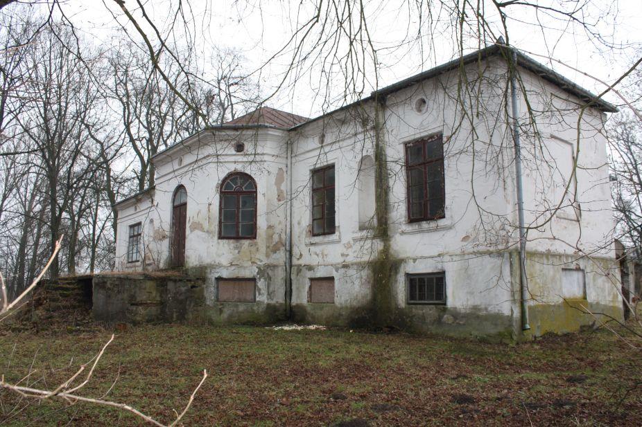 2019-02-15 Bujały - pałac (25)
