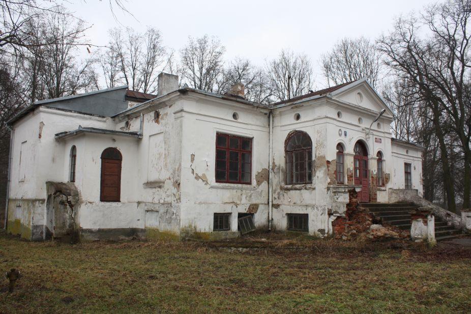 2019-02-15 Bujały - pałac (35)
