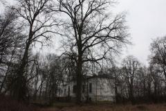 2019-02-15 Bujały - pałac (23)