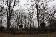 2019-02-15 Bujały - pałac (34)