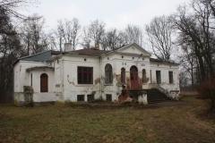 2019-02-15 Bujały - pałac (38)