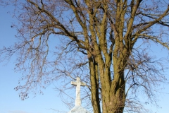 2020-01-05 Rylsk Duży kapliczka nr1 (15)