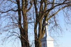 2020-01-05 Rylsk Duży kapliczka nr1 (3)