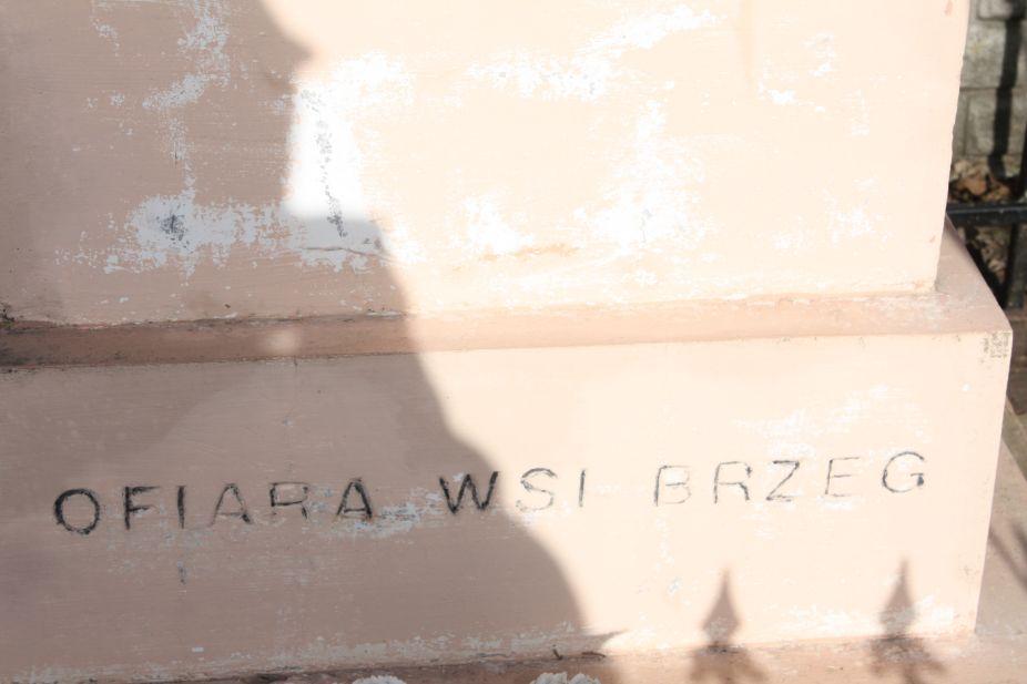 2019-02-24 Brzeg kapliczka nr1 (7)
