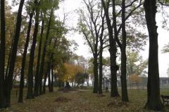 2011-10-30 Czerniewice - park (32)