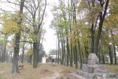 2011-10-30 Czerniewice - park (39)