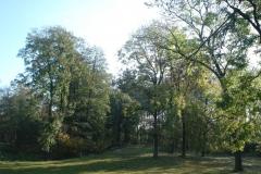 2007-10-21 Drzewica - ruiny zamku (7)