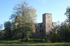 2007-10-21 Drzewica - ruiny zamku (8)