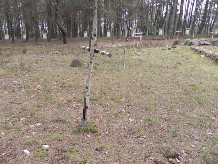 2011-04-17 Inowłódz - cm. z I wojny światowej (18)