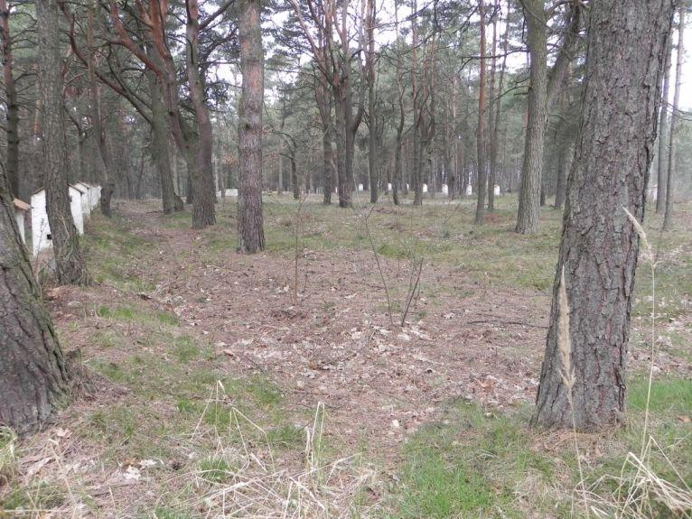 2011-04-17 Inowłódz - cm. z I wojny światowej (3)