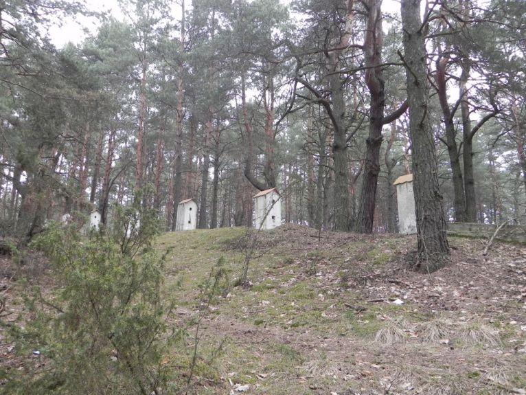 2011-04-17 Inowłódz - cm. z I wojny światowej (37)