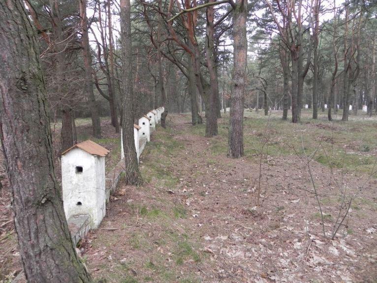 2011-04-17 Inowłódz - cm. z I wojny światowej (4)