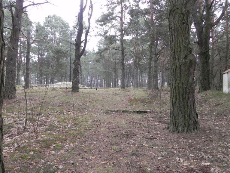 2011-04-17 Inowłódz - cm. z I wojny światowej (43)