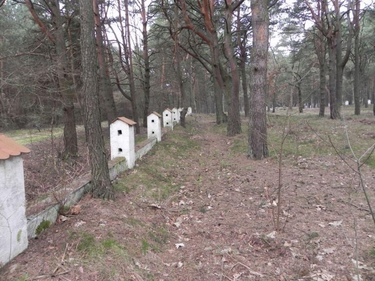 2011-04-17 Inowłódz - cm. z I wojny światowej (5)