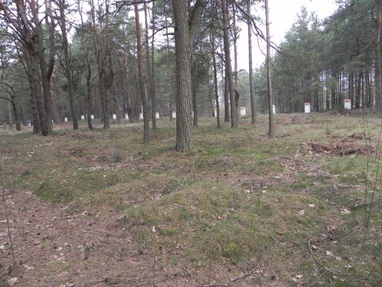 2011-04-17 Inowłódz - cm. z I wojny światowej (7)
