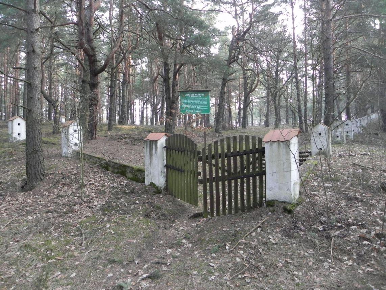 2014-04-10 Inowłódz - cm. z I wojny światowej (20)
