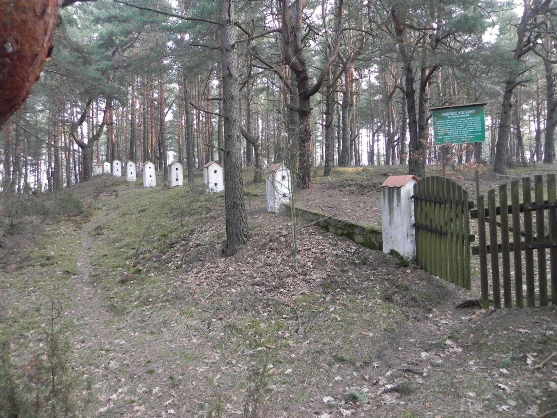 2014-04-10 Inowłódz - cm. z I wojny światowej (21)