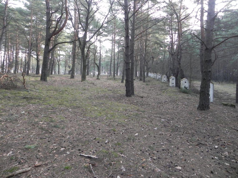 2014-04-10 Inowłódz - cm. z I wojny światowej (24)