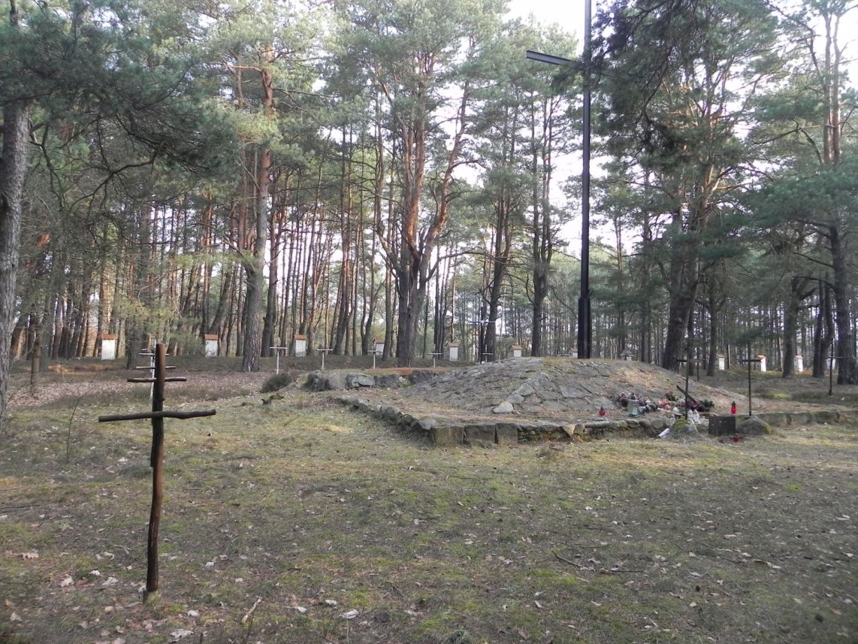 2014-04-10 Inowłódz - cm. z I wojny światowej (26)