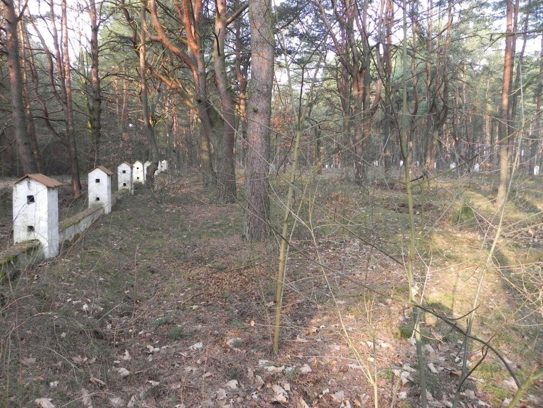 2014-04-10 Inowłódz - cm. z I wojny światowej (30)