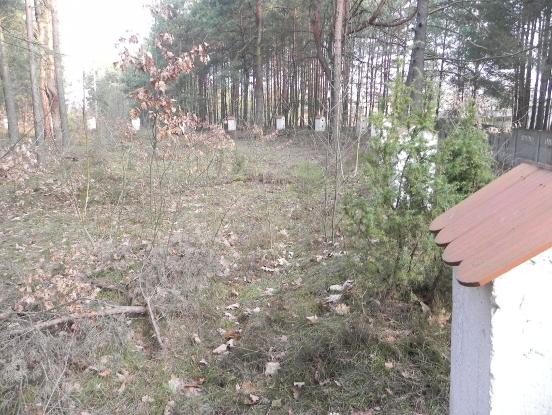 2014-04-10 Inowłódz - cm. z I wojny światowej (31)