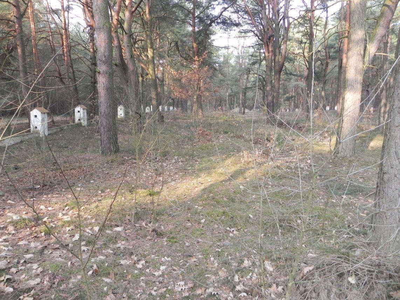 2014-04-10 Inowłódz - cm. z I wojny światowej (32)