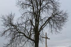 Sierzchowy krzyż nr5 (11)